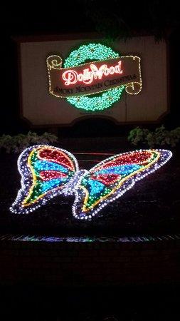 Dollywood: Pretty lights