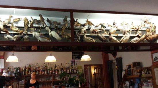 Le Flamant Rose : le décor ornithologique du restaurant