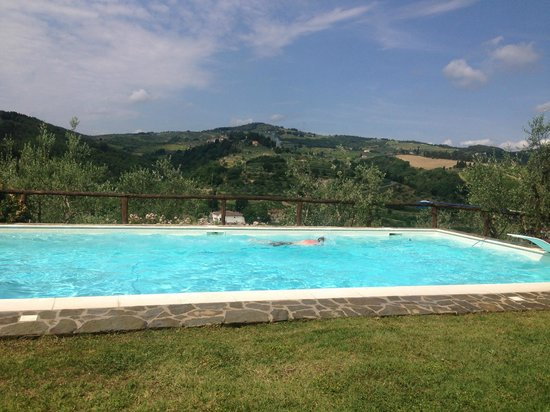 Podere Campriano: Pool views!