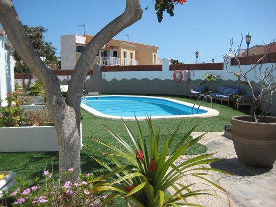 Bungalows Neptuno: het zwembad en de tuin