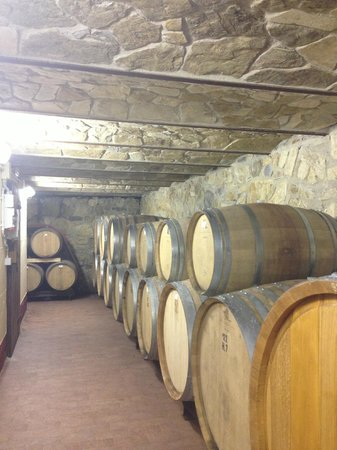 Podere Campriano: Winery Tour