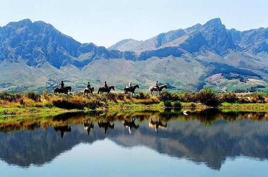 ‪Tulbagh Horse Trails‬