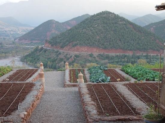 Kasbah Bab Ourika: The Kasbah's Vegetable Garden