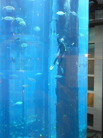 Radisson Blu Hotel, Berlin: вид из стеклянного лифта