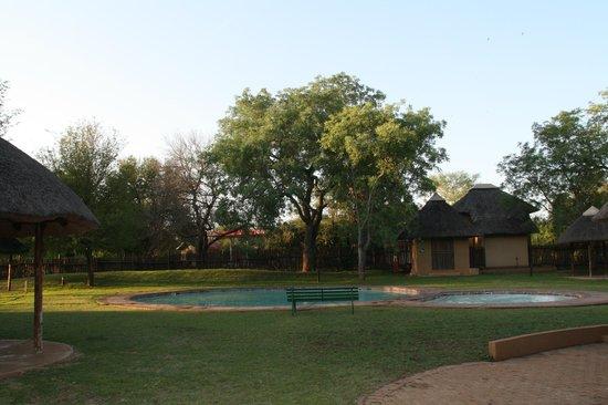 Satara Rest Camp: piscine