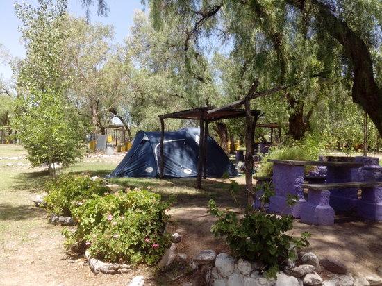 Camping El Mangrullo: AMPLIAS PARCELAS