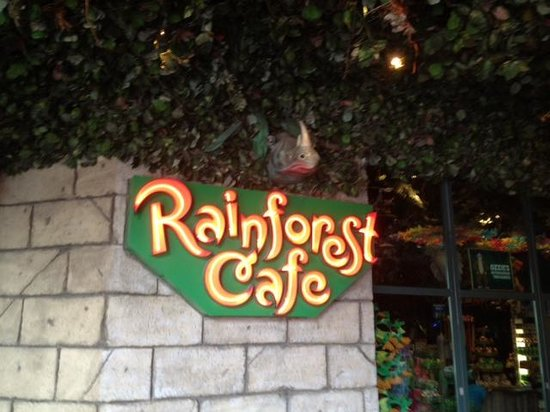 Rainforest Cafe 이미지