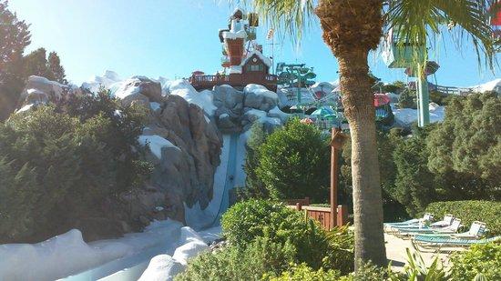 Blizzard Beach : The big drop!