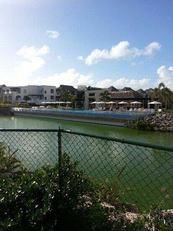 Hard Rock Hotel & Casino Punta Cana: bongos pool
