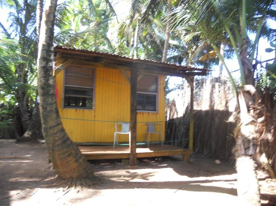 Casa Iguana: The back of our cabana