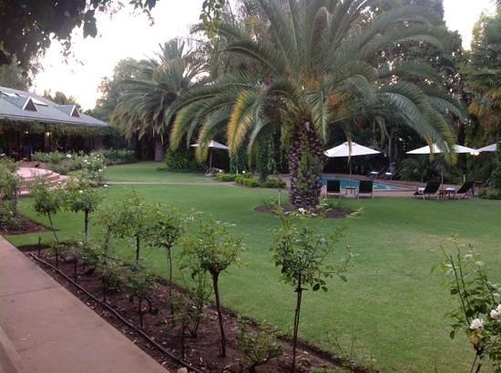 Hlangana lodge -garden