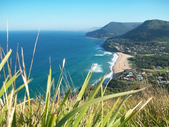 Bald Hill Lookout & Hang Gliding Spot: great view