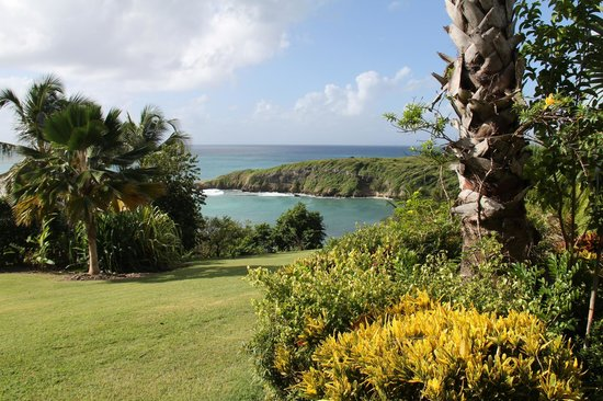 Hotel Amaudo: Le jardin: belle vue!