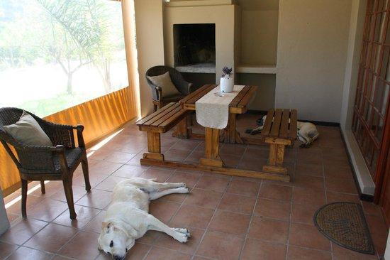 De Old Drift Guest Farm: patio