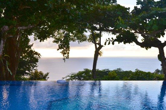 Tulemar Bungalows & Villas: Infinity pool