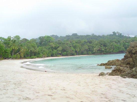 Shana By The Beach, Hotel Residence & Spa: Playa de Manuel Antonio