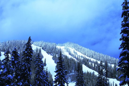 Pinnacle Lodge: Sun Peaks