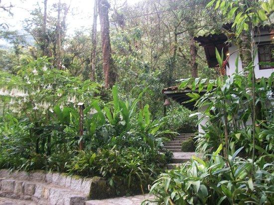 Inkaterra Machu Picchu Pueblo Hotel: Hacia las habitaciones