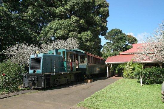 Kauai Plantation Railway: Plantation train ready to depart