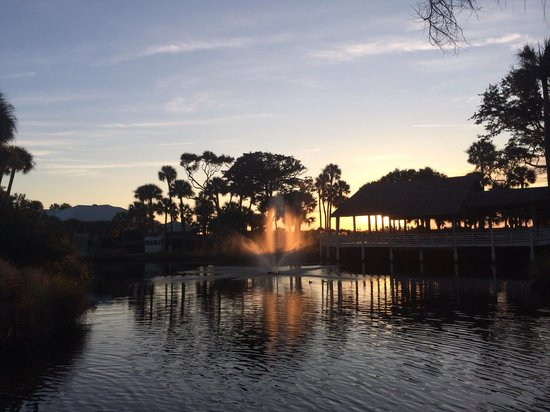 Sonesta Resort Hilton Head Island: The grounds