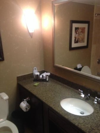 Embassy Suites by Hilton Atlanta - Galleria: bathroom. Decent size, good counter space, but not a lot of room if there's more than one person