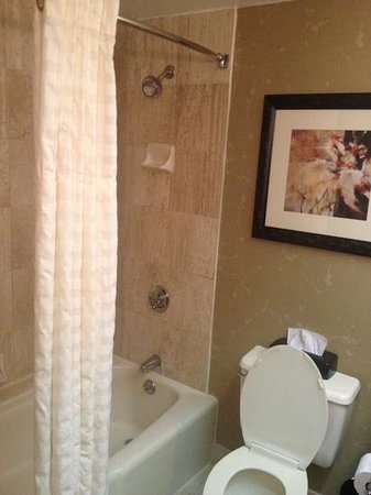 Embassy Suites by Hilton Atlanta - Galleria: Average shower with excellent water pressure.