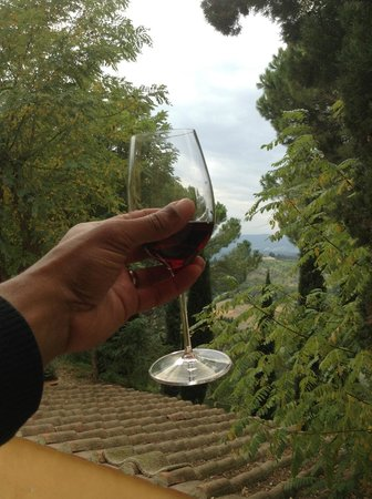 Al Gelso Bianco Farm-Holiday Resort : The Gelso Chianti & olive oil were superior!!