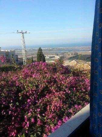 Hotel Beit Maimon : view of garden
