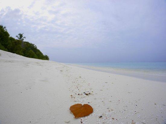 Angsana Ihuru : beach