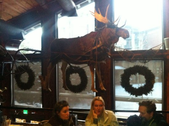 Mangy Moose Restaurant and Saloon: Love the moose hanging from the ceiling!