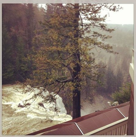 Salish Lodge & Spa: The view of the falls from the porch on our room.