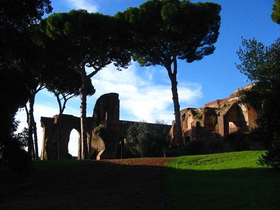 Residenza Arco dei Tolomei : Forum