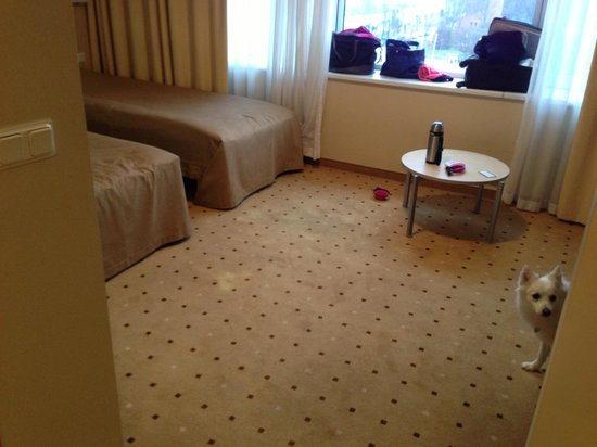 Park Hotel Latgola: Big, bare biz room with dodgy-looking carpet