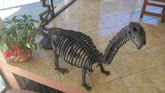 Hotel Kakchiquel: another lobby critter