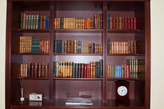 Hotel Kamp: Book case 2