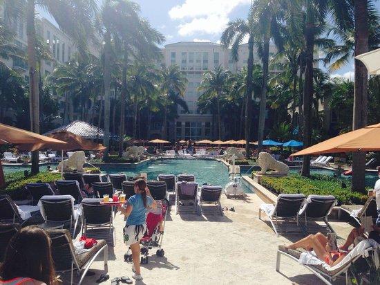 The Ritz-Carlton, San Juan: Beautiful pool exactly as we had pictured it!
