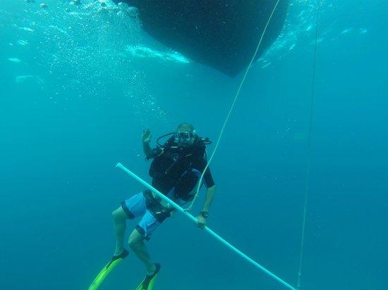 Carlisle Bay Antigua : Scuba Diving off the Coast of Carlisle Bay, Antigua