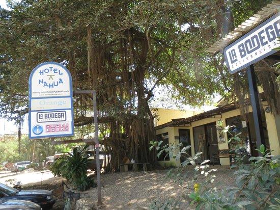 Hotel Nahua: Entrance area next to bakery