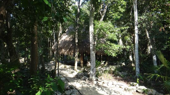 Cavelands Ecolodges: Another cave and palapa