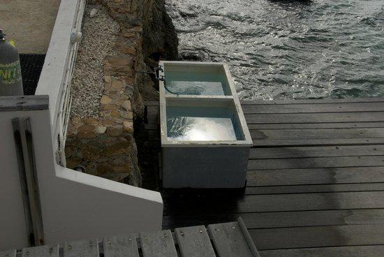 Belmar Oceanfront  Apartments: Scuba wash tanks right on dock
