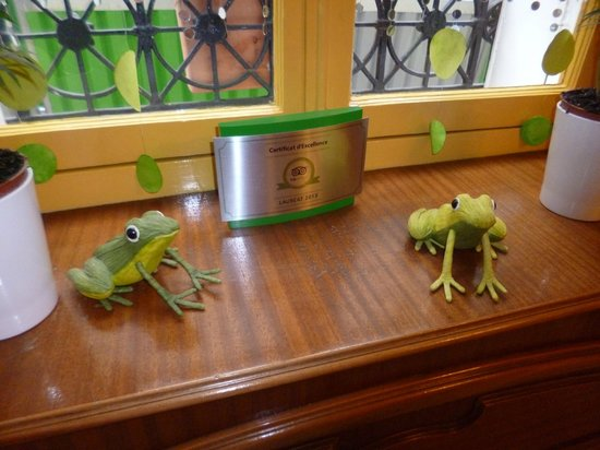 resident frogs at the Grand Hotel des Balcons