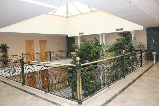 Hotel Laguna Park Madrid: Segunda planta del hotel.