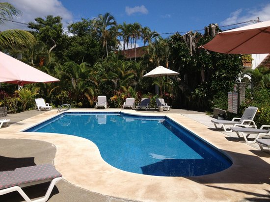 Hotel Pochote Grande: Pool