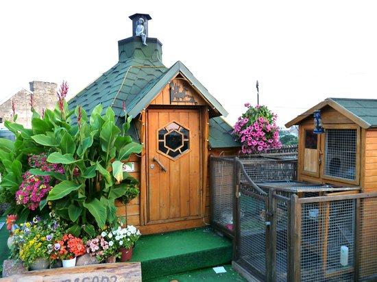Baltpark Hotel : The little sauna