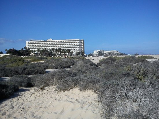 ClubHotel Riu Oliva Beach Resort: View from the beach/dunes