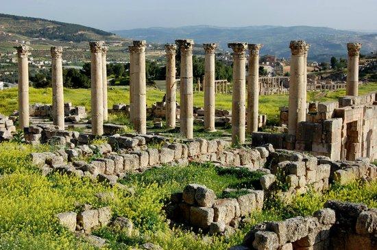 Ruinas de Jerash: Romeinse ruïnestad Jerash