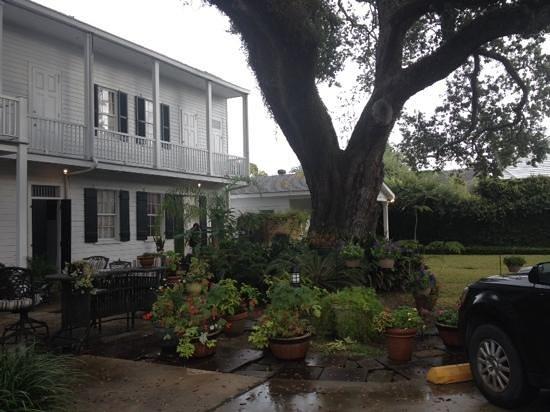 Ashton's Bed and Breakfast: Backyard sitting area under oak