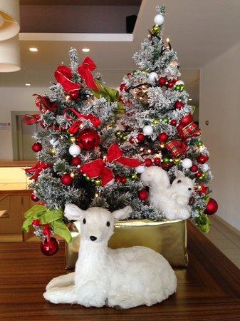 Riviera Palace Residence : Natale 2013
