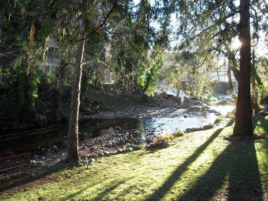 Deer Creek Inn : Back yard, at back of pic is bridge to downtown