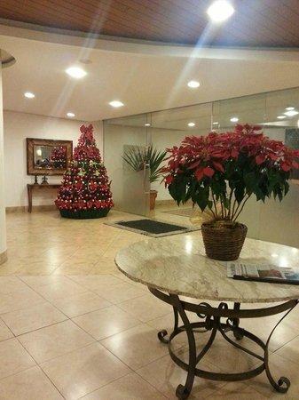 Panorama Hotel & Spa : Recepção